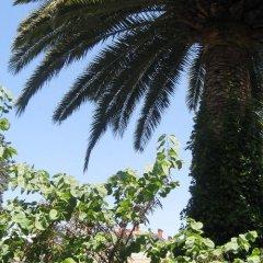 Отель Appart 'hôtel Villa Léonie Франция, Ницца - отзывы, цены и фото номеров - забронировать отель Appart 'hôtel Villa Léonie онлайн фото 6