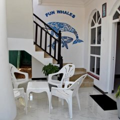 Fun whales Guest house and Hostel