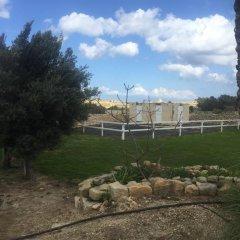 Отель Mediterranea Мальта, Марсаскала - отзывы, цены и фото номеров - забронировать отель Mediterranea онлайн фото 10