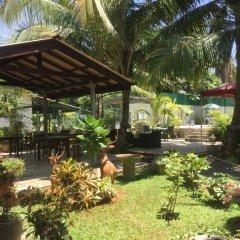 Отель Karl Holiday Bungalow Шри-Ланка, Калутара - отзывы, цены и фото номеров - забронировать отель Karl Holiday Bungalow онлайн фото 16