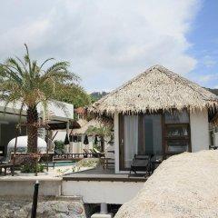 Отель Lazy Days Samui Beach Resort фото 10