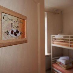 Отель Amber Rooms Номер категории Эконом с 2 отдельными кроватями