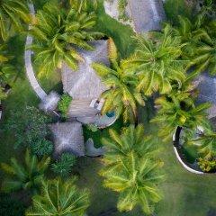 Отель Bora Bora Pearl Beach Resort and Spa Французская Полинезия, Бора-Бора - отзывы, цены и фото номеров - забронировать отель Bora Bora Pearl Beach Resort and Spa онлайн фото 7