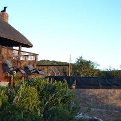 Отель Harmony Game Lodge Южная Африка, Аддо - отзывы, цены и фото номеров - забронировать отель Harmony Game Lodge онлайн фото 7