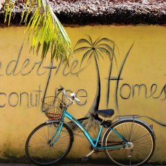 Отель Under the coconut tree спортивное сооружение