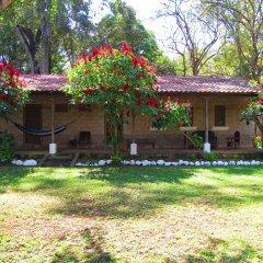 Отель El Bosque Hotel Гондурас, Копан-Руинас - отзывы, цены и фото номеров - забронировать отель El Bosque Hotel онлайн фото 15