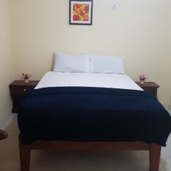 Отель Kingston Paradise Place Guesthouse комната для гостей фото 3