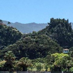 Отель EcoQuinta Faial Португалия, Машику - отзывы, цены и фото номеров - забронировать отель EcoQuinta Faial онлайн