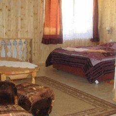 Hotel Elitza Чепеларе комната для гостей фото 3