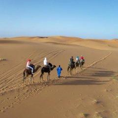 Отель Kasbah Tamariste Марокко, Мерзуга - отзывы, цены и фото номеров - забронировать отель Kasbah Tamariste онлайн приотельная территория фото 2