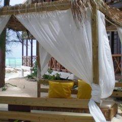 Отель N Resort Ямайка, Дискавери-Бей - отзывы, цены и фото номеров - забронировать отель N Resort онлайн бассейн