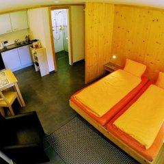 Отель Chalet Weidhaus Ferienwohnung & Zimmer Студия с различными типами кроватей фото 10