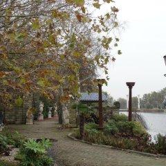 Отель Paradijs Eiland Нидерланды, Хазерсвауде-Рейндейк - отзывы, цены и фото номеров - забронировать отель Paradijs Eiland онлайн фото 2