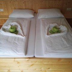 Отель Berggasthof Veitenhof Стандартный номер с различными типами кроватей