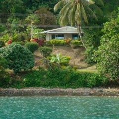 Отель Gecko Lodge Fiji Савусаву приотельная территория фото 2
