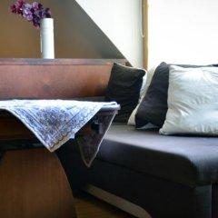 Отель Olga Литва, Тракай - отзывы, цены и фото номеров - забронировать отель Olga онлайн комната для гостей фото 2