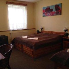 Отель Pension Platan 3* Стандартный номер с различными типами кроватей фото 3