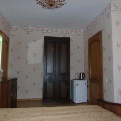 Гостевой дом Яна 2* Стандартный номер с различными типами кроватей фото 3