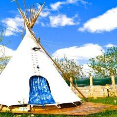 Отель Camping Kromidovo Болгария, Сандански - отзывы, цены и фото номеров - забронировать отель Camping Kromidovo онлайн спортивное сооружение