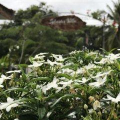 Sylvester Villa Hostel Negombo фото 5
