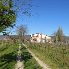 Отель Agriturismo L'Albara Италия, Лимена - отзывы, цены и фото номеров - забронировать отель Agriturismo L'Albara онлайн фото 10