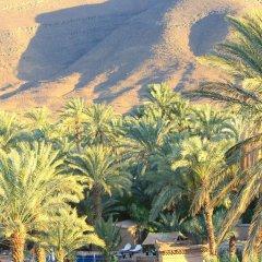 Отель Ecolodge Bab El Oued Maroc Oasis фото 11