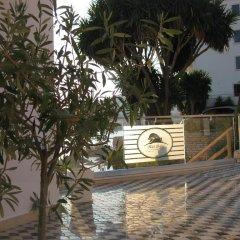 Отель Delfini Албания, Саранда - отзывы, цены и фото номеров - забронировать отель Delfini онлайн