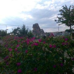Отель Kapadokya Karşı Bağ Camping Ургуп фото 10