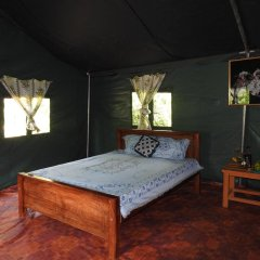 Отель Yala Peocok Camping Номер Делюкс с различными типами кроватей фото 3