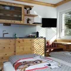 Отель Tischlmühle Appartements & mehr Студия с различными типами кроватей фото 13