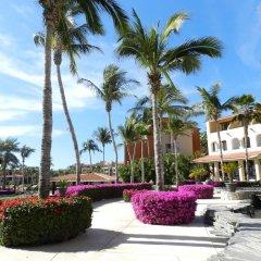 Отель Condominios Coral Мексика, Сан-Хосе-дель-Кабо - отзывы, цены и фото номеров - забронировать отель Condominios Coral онлайн