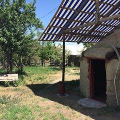 Отель Turkestan Yurt Camp Кыргызстан, Каракол - отзывы, цены и фото номеров - забронировать отель Turkestan Yurt Camp онлайн фото 14