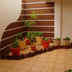 Отель Apartahotel Las Hortensias Гондурас, Тегусигальпа - отзывы, цены и фото номеров - забронировать отель Apartahotel Las Hortensias онлайн фото 4