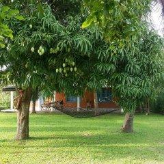 Отель Wewa Addara Guesthouse фото 3