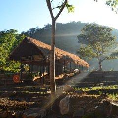 Отель Ella Jungle Resort Шри-Ланка, Бандаравела - отзывы, цены и фото номеров - забронировать отель Ella Jungle Resort онлайн фото 6