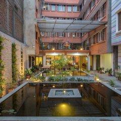 Отель Potala Guest House Непал, Катманду - отзывы, цены и фото номеров - забронировать отель Potala Guest House онлайн фото 4