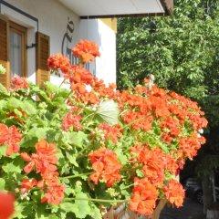 Отель Garni Kofler Тироло фото 2
