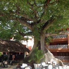 Отель ANDREA1970 Доминикана, Бока Чика - отзывы, цены и фото номеров - забронировать отель ANDREA1970 онлайн фото 2