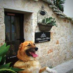 Отель Trulli Mille e una Notte Альберобелло с домашними животными
