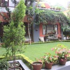 Отель Green Hotel Непал, Катманду - отзывы, цены и фото номеров - забронировать отель Green Hotel онлайн фото 6