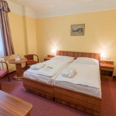 Spa Hotel Vltava 3* Номер Комфорт с двуспальной кроватью фото 2