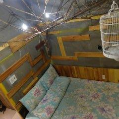 Gaia Hostel Номер категории Эконом