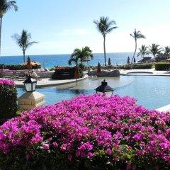 Отель Condominios Coral Мексика, Сан-Хосе-дель-Кабо - отзывы, цены и фото номеров - забронировать отель Condominios Coral онлайн бассейн