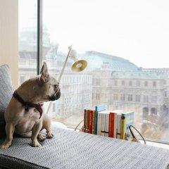 Отель The Guesthouse Vienna Австрия, Вена - отзывы, цены и фото номеров - забронировать отель The Guesthouse Vienna онлайн с домашними животными