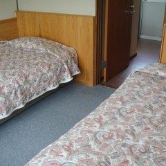Отель Turtle Inn Nikko 2* Стандартный номер фото 4