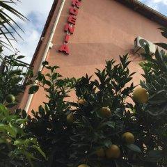 Отель Villa Gardenia Ureki фото 15