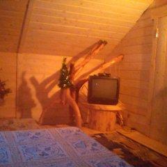 Гостиница Petrikholm удобства в номере