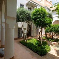 Отель Le Riad Berbere Марокко, Марракеш - отзывы, цены и фото номеров - забронировать отель Le Riad Berbere онлайн фото 4