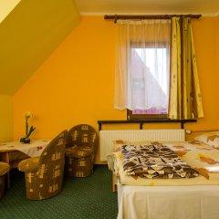 Отель Willa Marysieńka Стандартный номер фото 18
