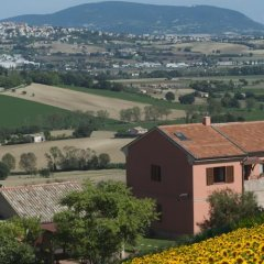 Отель L'Erbaiuola Италия, Реканати - отзывы, цены и фото номеров - забронировать отель L'Erbaiuola онлайн фото 9